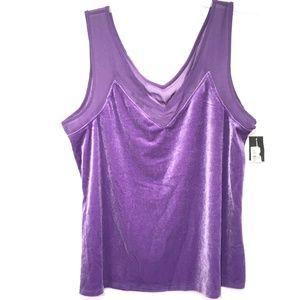 INC Purple Velvet Sheer Illusion Inset V-Neck Top